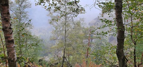 ferienwohnung-elbsandsteingebirge-3